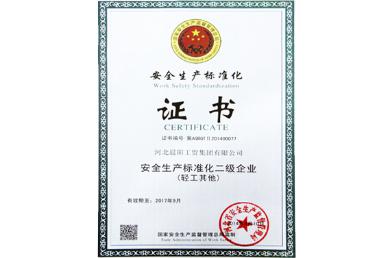 Second Level Work Safety Standardization Enterprise Certificate